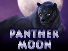 игровой автомат Panther Moon / Лунная Пантера