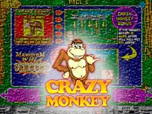 игровой автомат Crazy Monkey / Обезьянки / Сумасшедшая Обезьяна